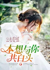 叶轻语林慕琛小说(本想与你共白头)_全章节免费阅读