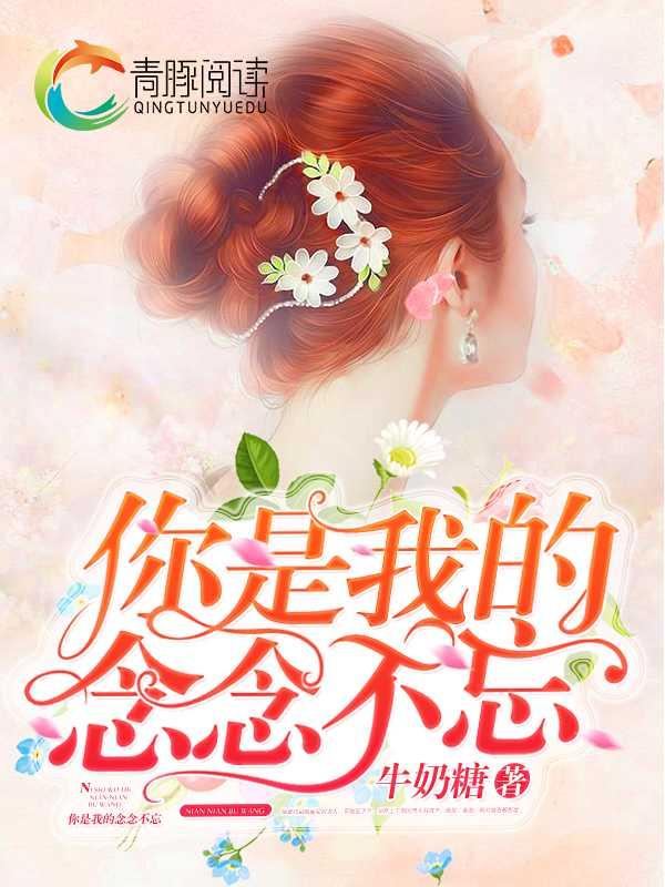 夏籽姚傅北宸抖音小说免费阅读《曾经是他最爱的女人》